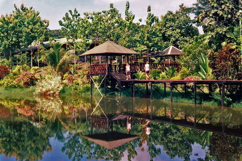 Island Jungle Resort
