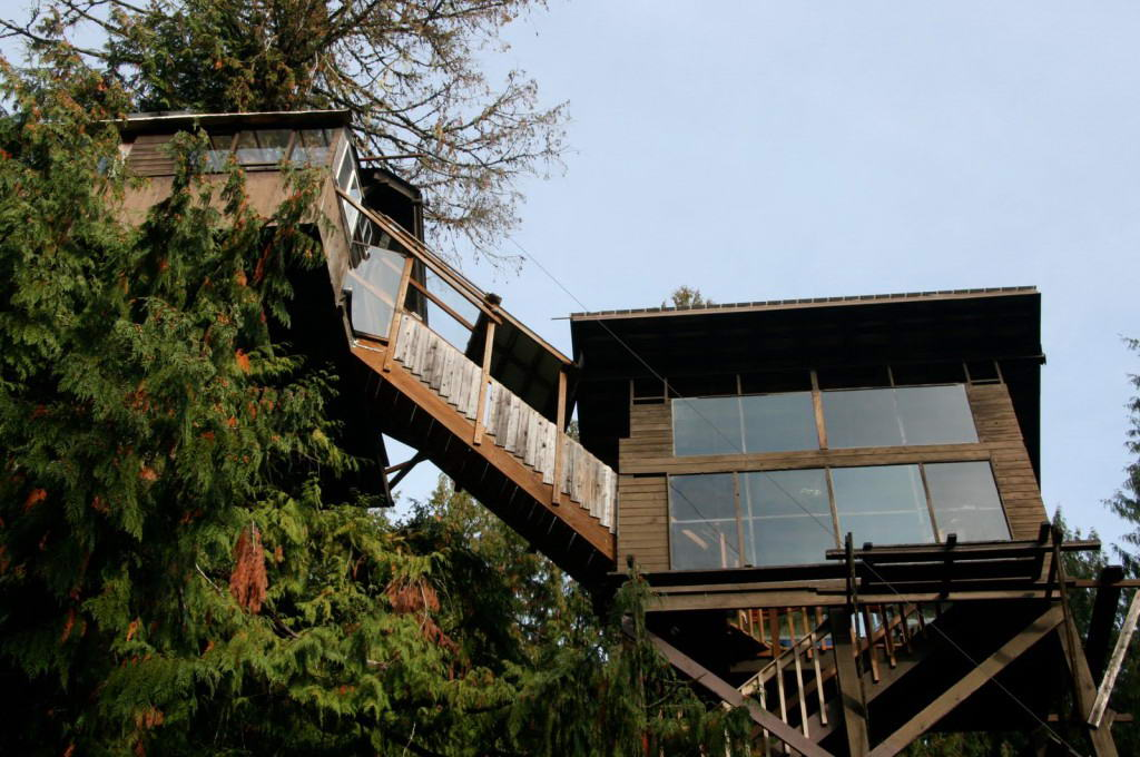Cedar Creek Tree house-Exterior