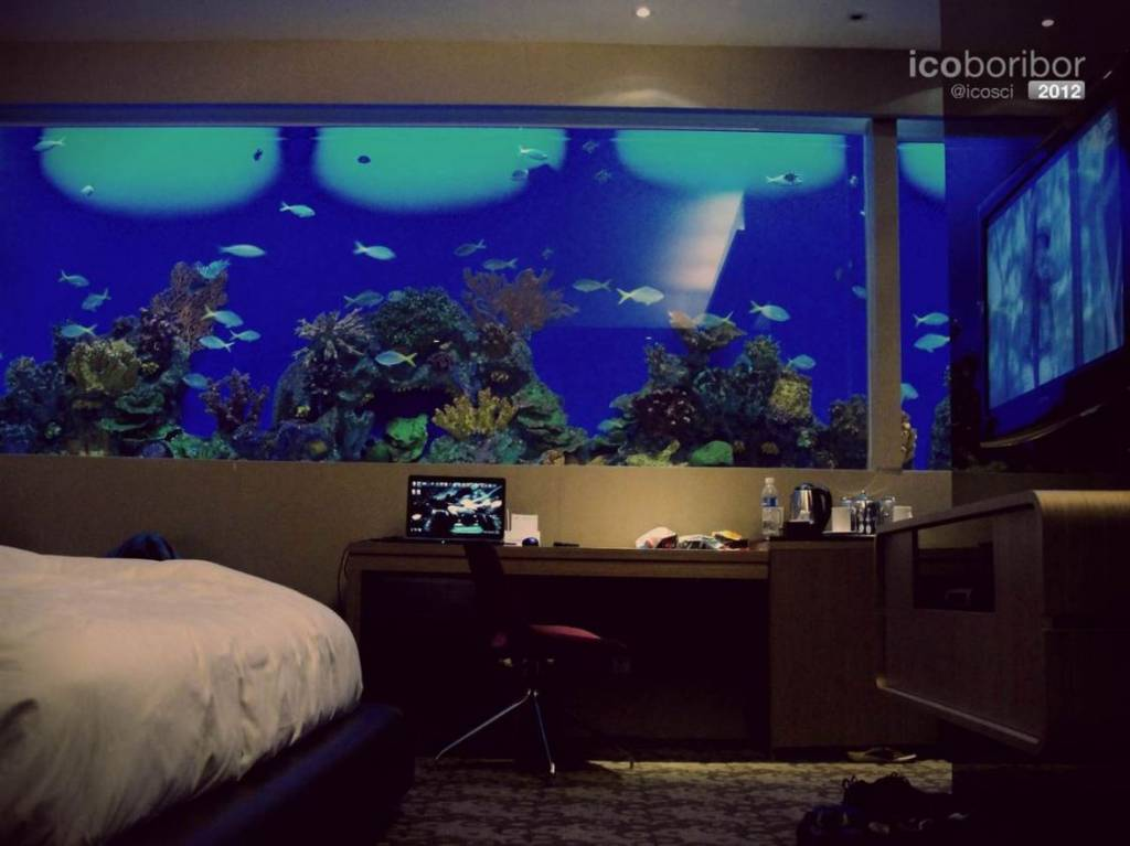 Hotel H20-Room