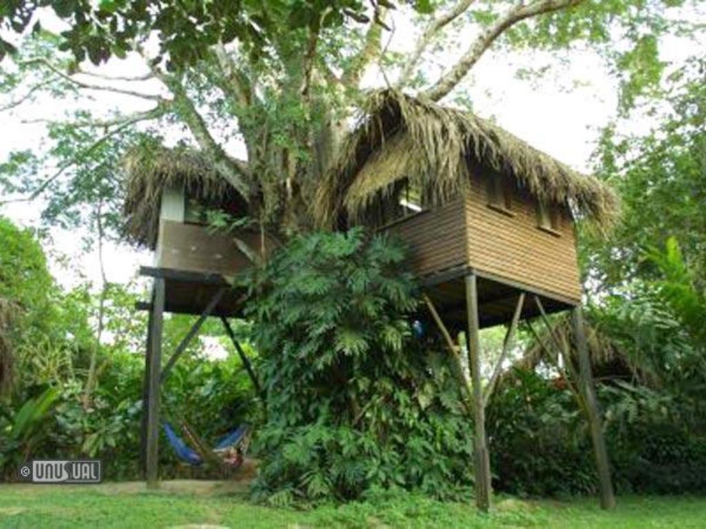 Parrot Nest Lodge, Belize
