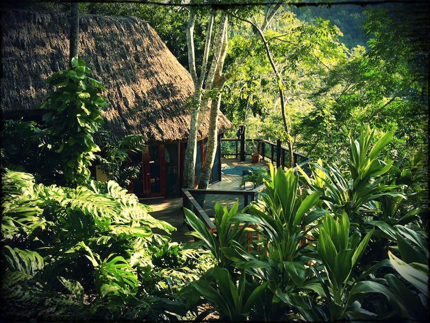 Parrot Nest Lodge-Exterior