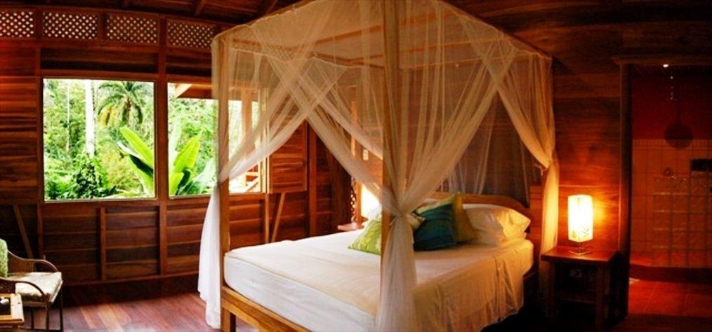 Tree House Lodge -Bedroom