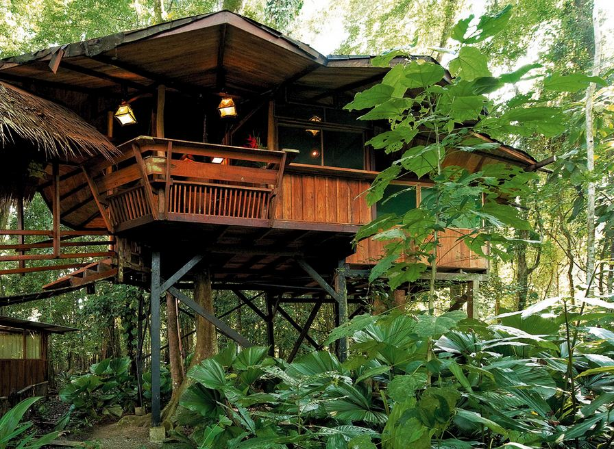 Tree House Lodge-Exterior