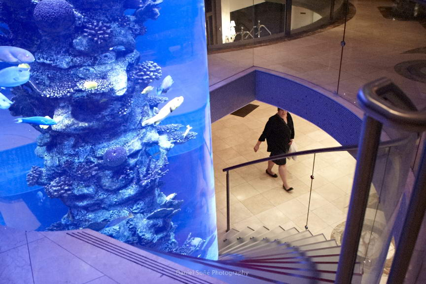 flatiron-hotel-lobby